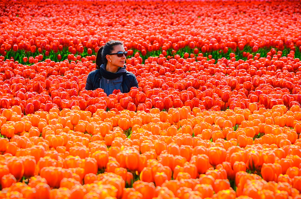 Young woman in tulip fields in Lisse, Netherlands, Europe - 1243-112