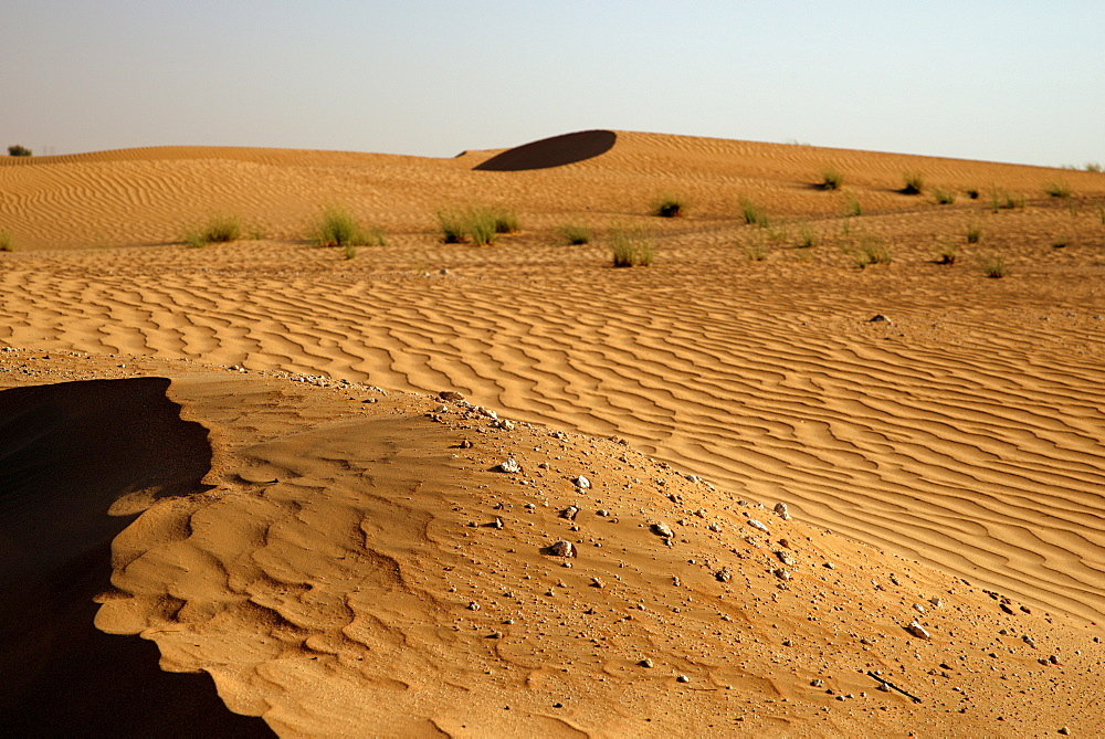 Sand dunes at sunset near Dubai, United Arab Emirates, Middle East