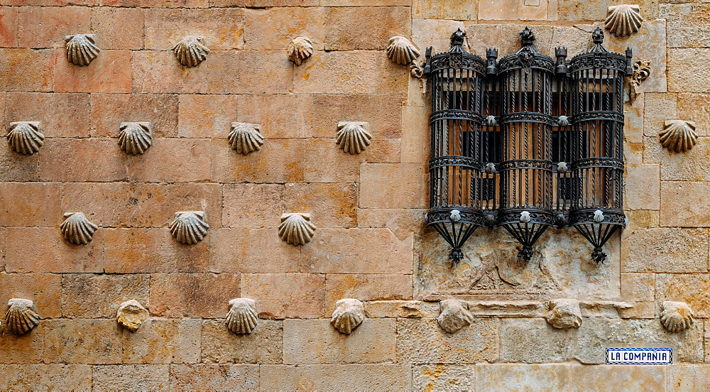 Facade to 16th-century Gothic palace covered in symbolic seashell motifs, now an exhibition space and library, Salamanca, Castilla y Leon, Spain, europe - 1243-272