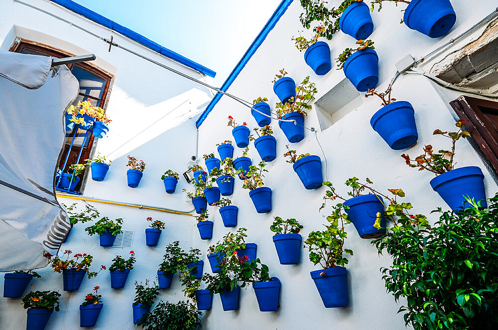 Traditional blue pots on a whitewashed wall in Cordoba, Andalucia, Spain