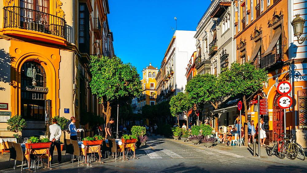 Calle Mateos Gago, a busy street with bars and restaurants in the historic centre of Seville, Andalusia, Spain, Europe - 1243-317