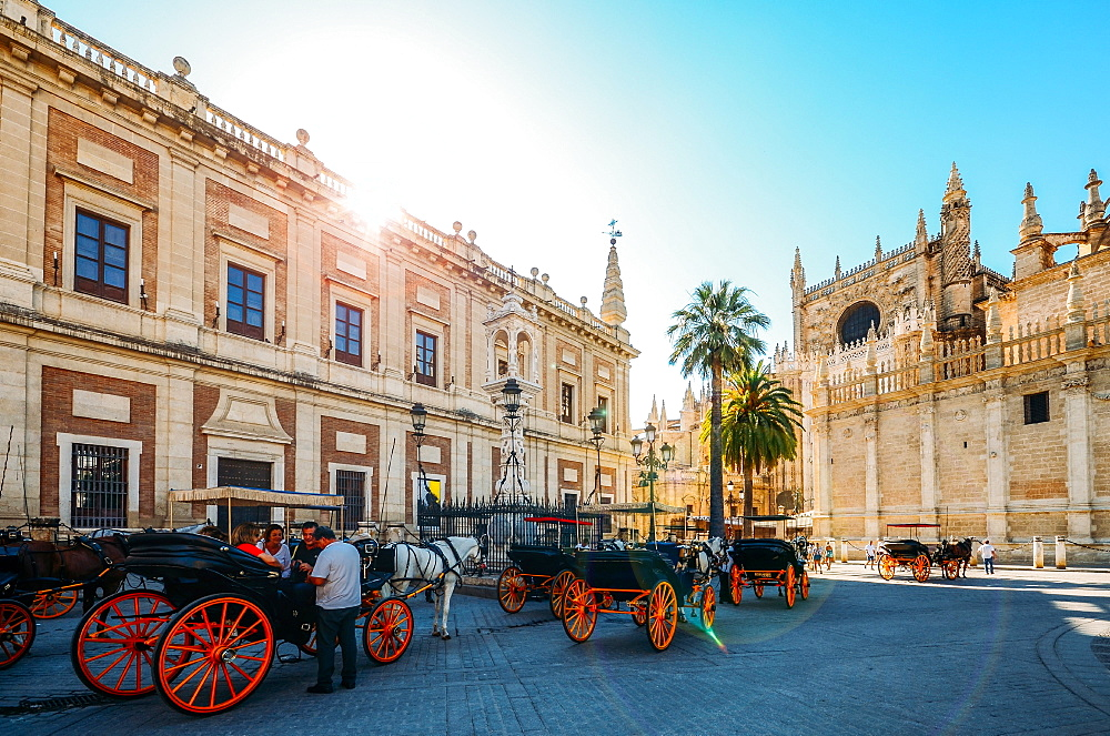 Horse-drawn carriages for hire on Plaza del Triunfo, Seville, Andalusia, Spain, Europe - 1243-321