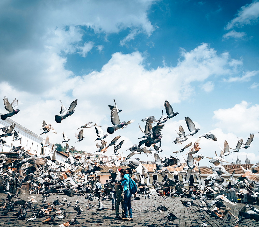 A flock of pigeons fly in front of the San Francisco square in the heart of Quito, Ecuador - 1243-34