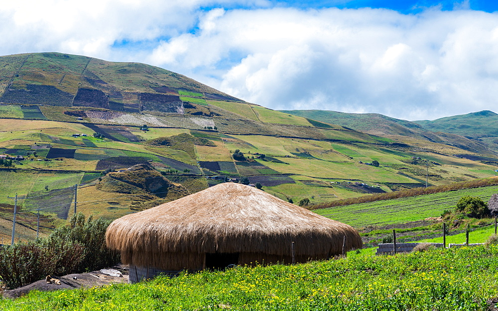 A traditional straw house in the Ecuadorian Andes - 1243-8
