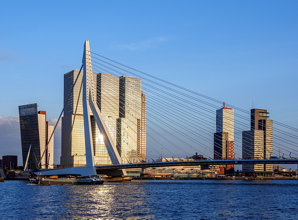 Erasmus Bridge, Rotterdam, South Holland, The Netherlands, Europe