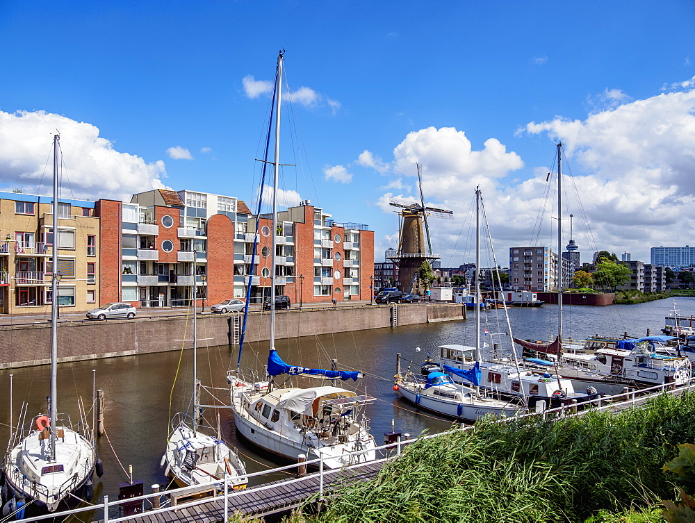 Middenkous Port and Windmill in Delfshaven, Rotterdam, South Holland, The Netherlands, Europe - 1245-1057