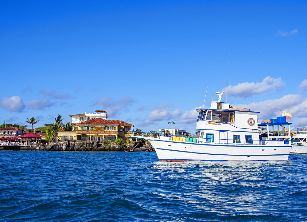 Boat in Puerto Ayora, Santa Cruz or Indefatigable Island, Galapagos, Ecuador