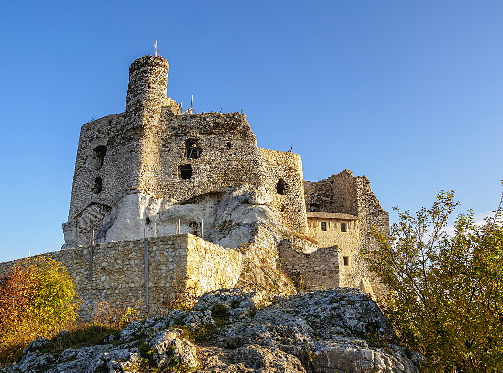 Mirow Castle Ruins, Trail of the Eagles' Nests, Krakow-Czestochowa Upland or Polish Jura, Silesian Voivodeship, Poland