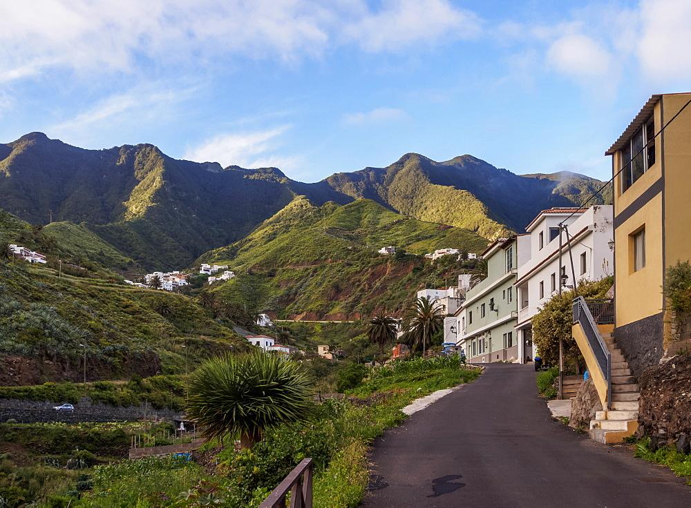 Taganana, Anaga, Tenerife Island, Canary Islands, Spain, Europe