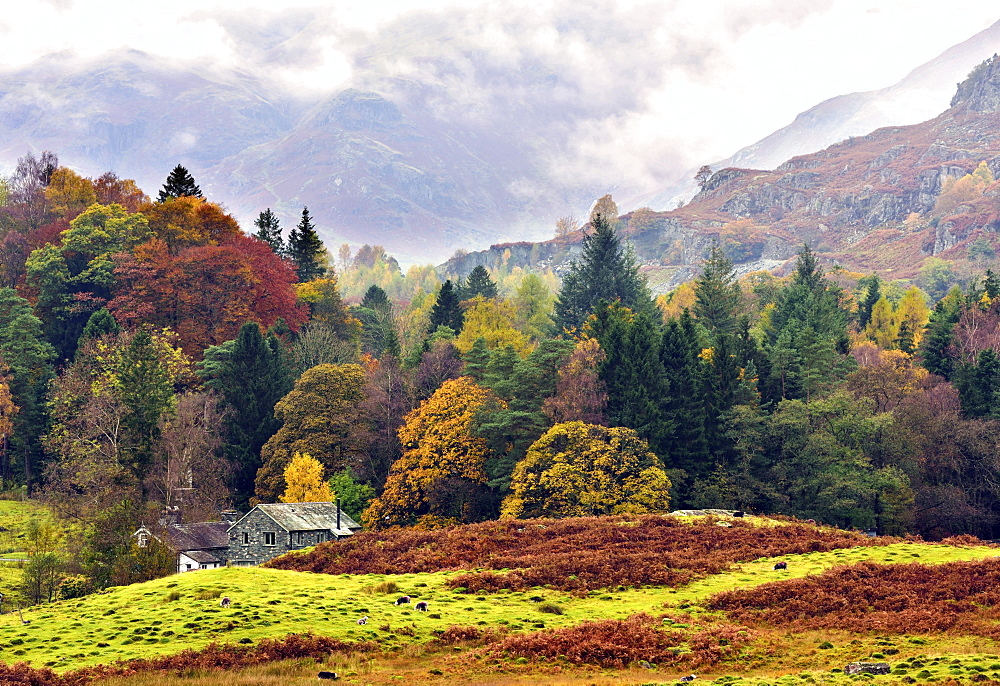 An autumn view of the scenic Langdale Valley, Lake District National Park, Cumbria, England, United Kingdom, Europe