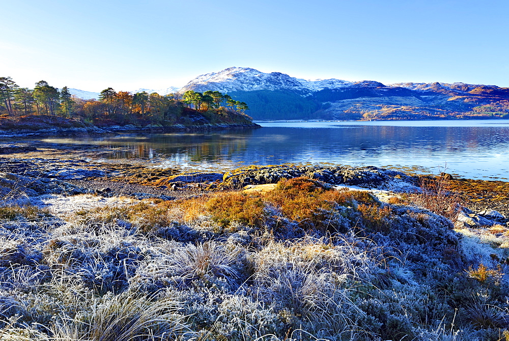 Winter view on a frosty sunny morning along the banks of Loch Sunart in the Ardnamurchan Peninsula, the Scottish Highlands, Scotland, United Kingdom, Europe