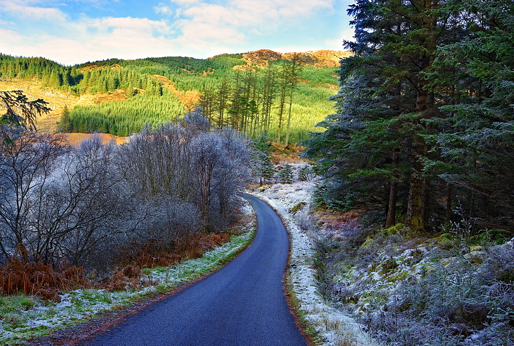 A winter view of a winding road through a wooded valley in the Ardnamurchan Peninsula, the Scottish Highlands, Scotland, United Kingdom, Europe