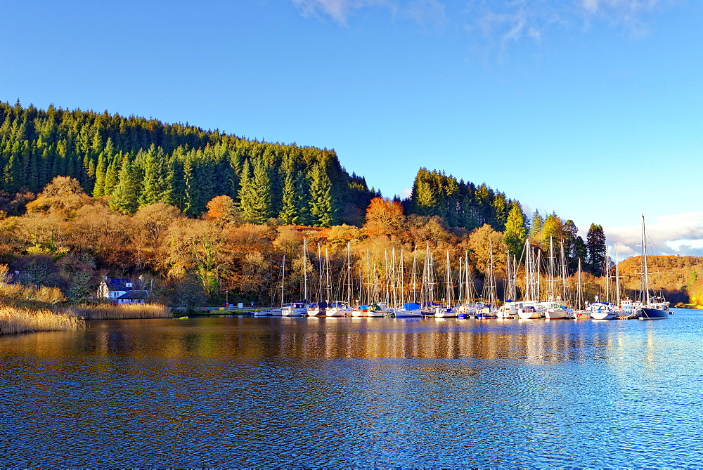 A tranquil autumn view of the Crinan Canal in The Scottish Highlands - 1246-40