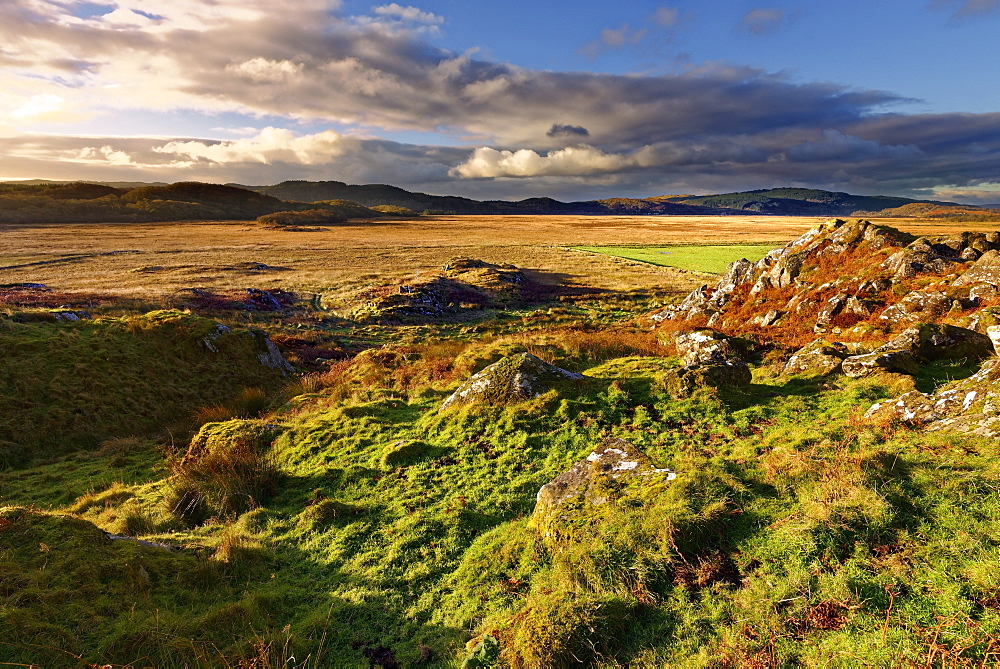 A winter view looking across Moine Mhor Nature Reserve from Dunadd Fort in the Scottish Highlands. - 1246-41