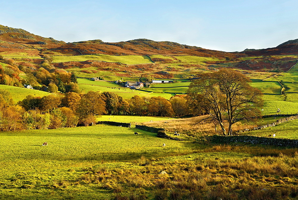 An autumn view of the scenic Duddon Valley, Lake District National Park, Cumbria, England, United Kingdom, Europe - 1246-5