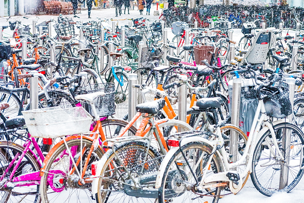 Snow covered bicycles, Copenhagen, Denmark, Scandinavia, Europe - 1247-64