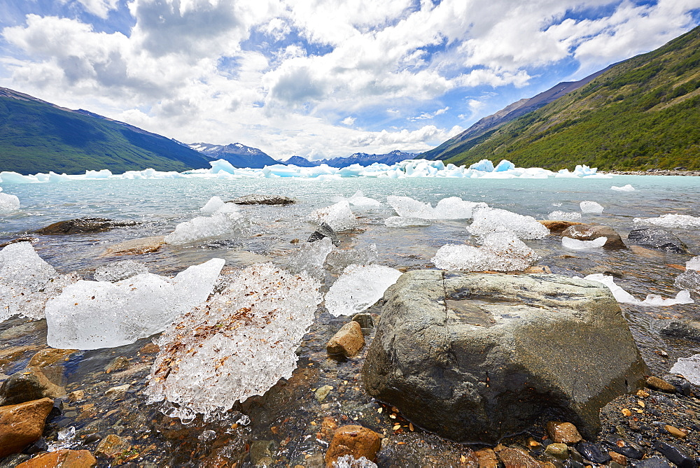 Blocks of ice float in one of the affluents of Lago Argentino, next to Perito Moreno Glacier, and wash ashore by the rocks, Los Glaciares National Park, UNESCO World Heritage Site, Patagonia, Argentina, South America