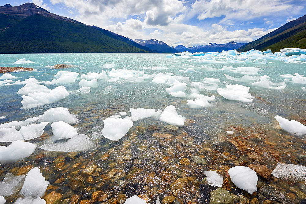 Blocks of ice float in one of the affluents of Lago Argentino, next to Perito Moreno Glacier, and wash ashore before they melt, Los Glaciares National Park, UNESCO World Heritage Site, Patagonia, Argentina, South America.
