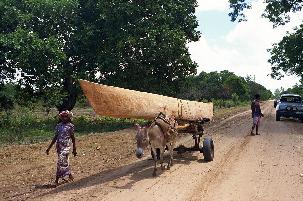 Donkey transporting dhow, Watamu, Kenya, East Africa, Africa - 125-529