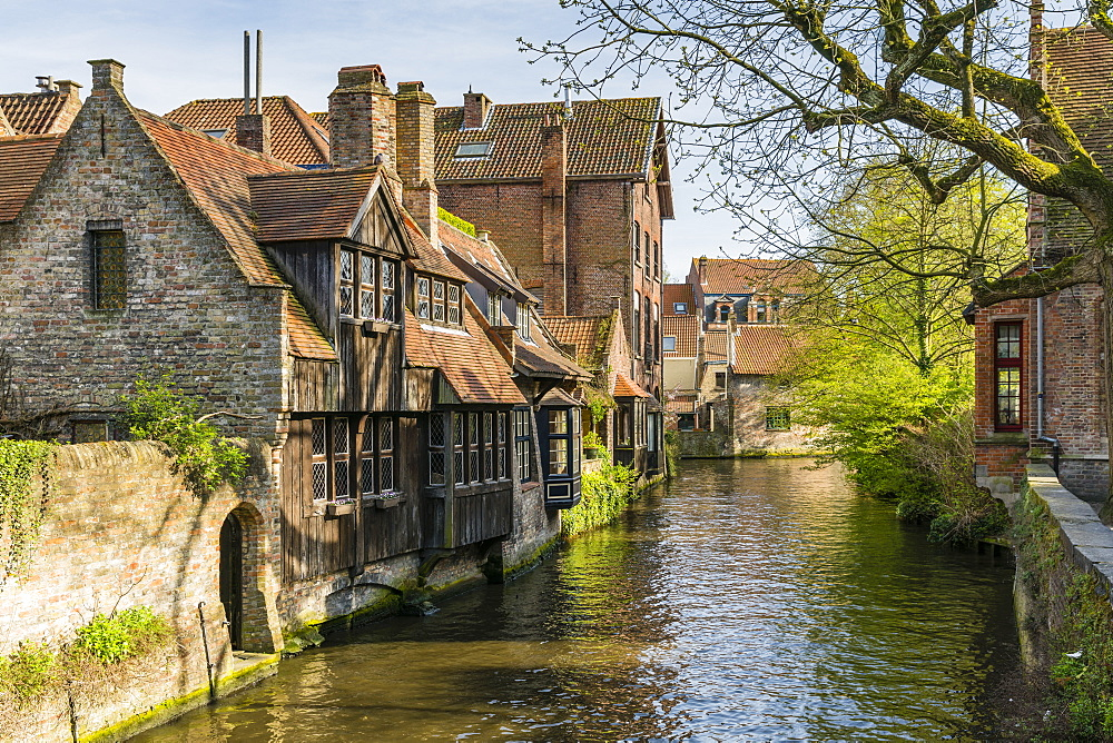 Typical houses on water canal. Bruges, West Flanders province, Flemish region, Belgium.
