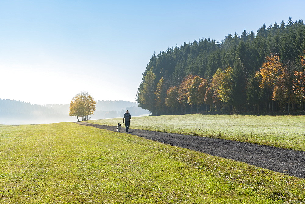 Man and dog walking along a road in the countryside. Heinstetten, Baden-Wv?rttemberg, Germany. - 1251-414