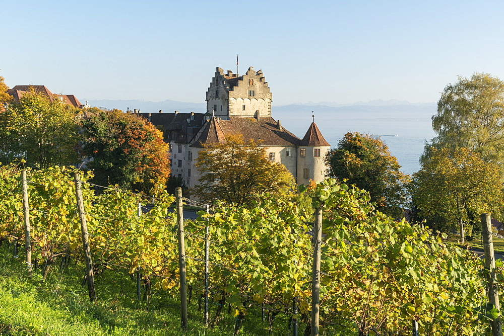 Vineyards and the Old castle in the background, Meersburg, Baden-Wurttemberg, Germany, Europe