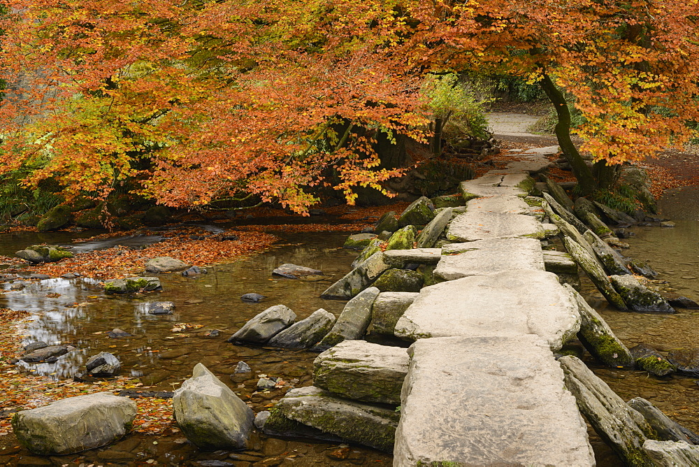 Tarr Steps, a clapper bridge crossing the River Barle on Exmoor, Somerset, England, United Kingdom, Europe - 1255-10