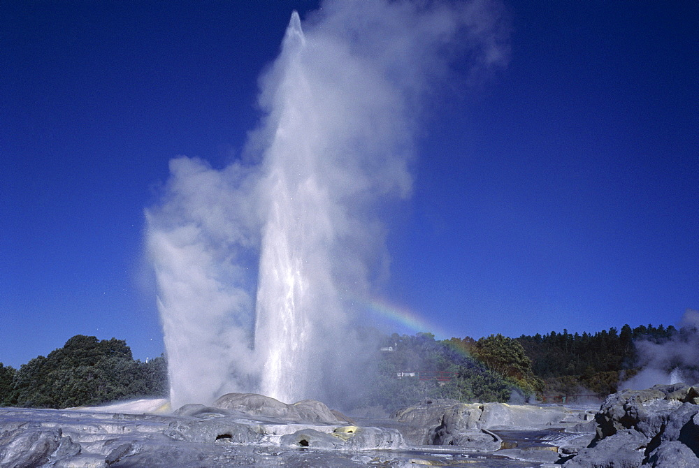 Pohutu Geyser at Whakarewarewa, Rotorua, South Auckland, North Island, New Zealand, Pacific