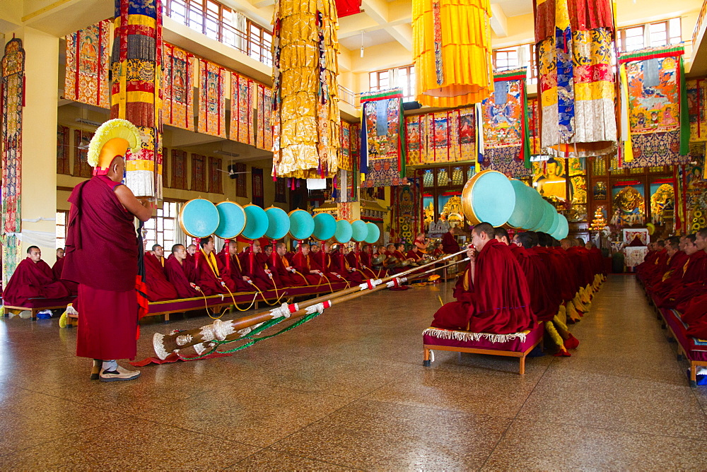 Buddhist monks of the yellow hat tradition, Gyuto Tantric Monastery, Dharamsala, Himachal Pradesh, India, Asia - 1262-117