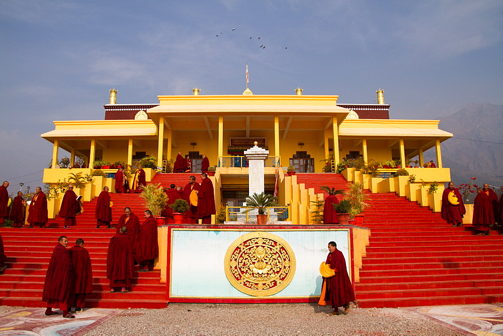 Buddhist monks and the Karmapa temple, Gyuto Tantric Monastery, Dharamsala, Himachal Pradesh, India, Asia - 1262-118