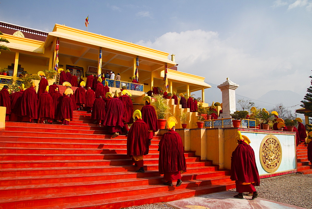 Buddhist monks of the yellow hat tradition, Gyuto Tantric Monastery, Dharamsala, Himachal Pradesh, India, Asia