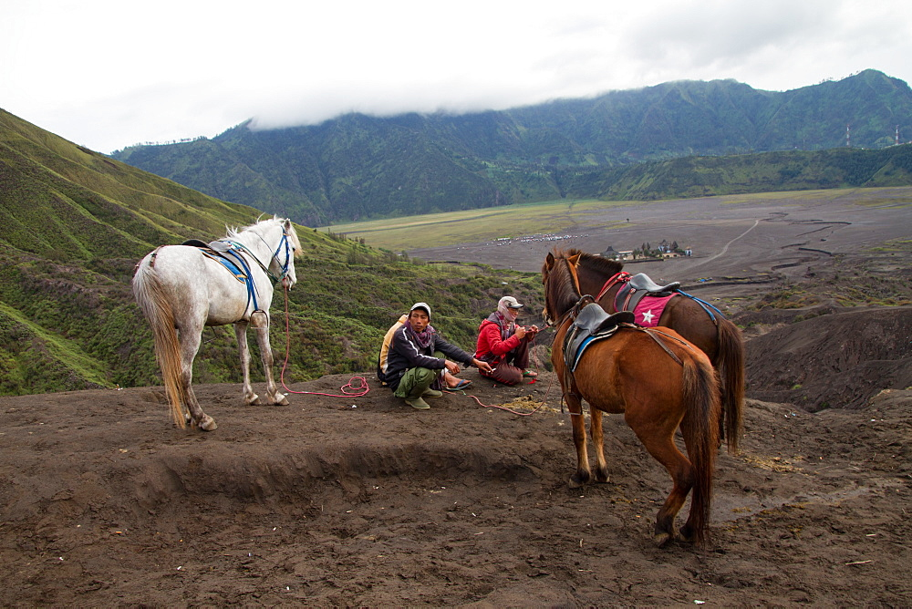 Horsemen and horses on the banks of Mount Bromo volcano, Eastern Java, Indonesia, Southeast Asia, Asia