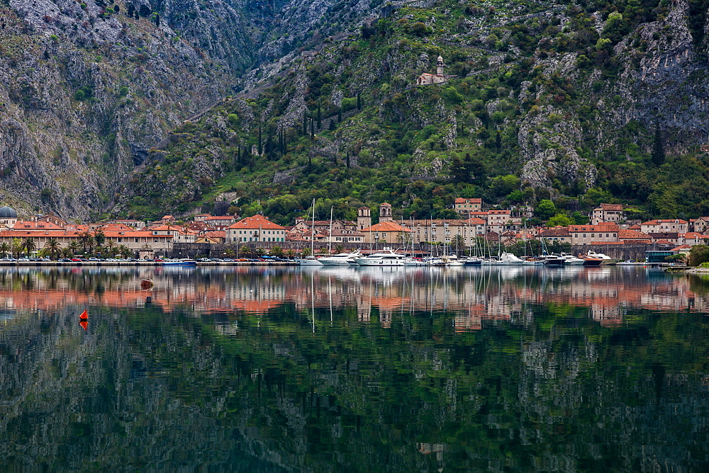 Old Town (stari grad) of Kotor reflected in Kotor Bay, UNESCO World Heritage Site, Montenegro, Europe - 1263-21