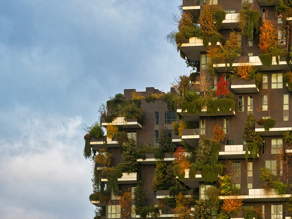 Porta Nuova, Bosco Verticale at sunrise, Milan, Lombardy, Italy, Europe - 1264-233