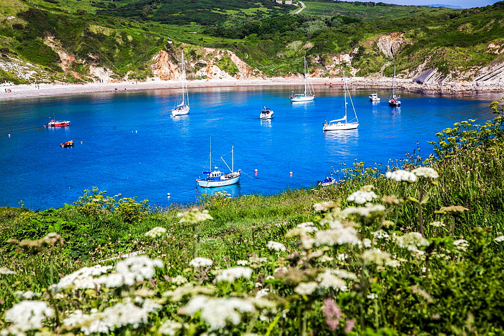 Lulworth Cove on a hot summer day, Jurassic Coast, UNESCO World Heritage Site, Dorset, England, United Kingdom, Europe
