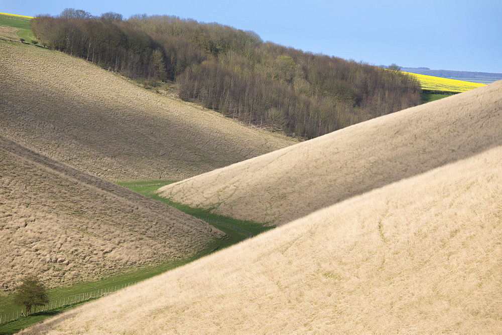 Valley footpath and overlapping hills at Horse Dale, near Huggate in the Yorkshire Wolds, East Riding of Yorkshire, Yorkshire, England, United Kingdom, Europe - 1266-14