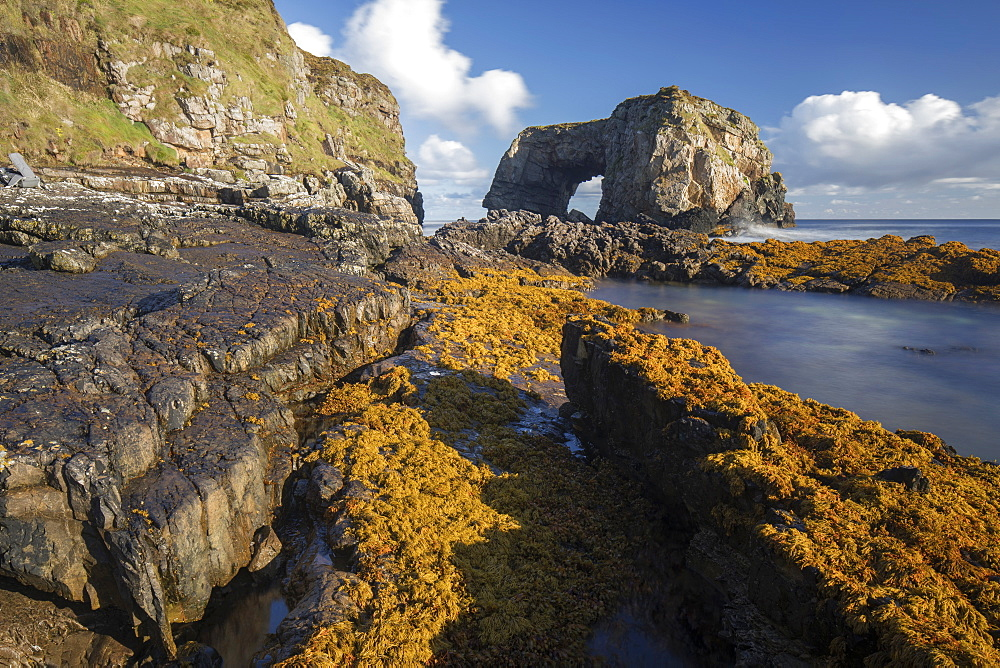 The Great Pollet Sea Arch on the Fanad Headland and part of the Wild Atlantic Way, County Donegal, Ulster, Republic of Ireland, Europe