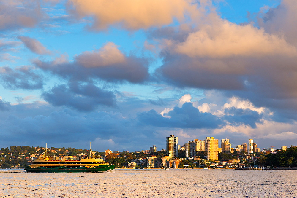 A ferry in Sydney Harbour in evening light, Sydney, New South Wales, Australia, Pacific
