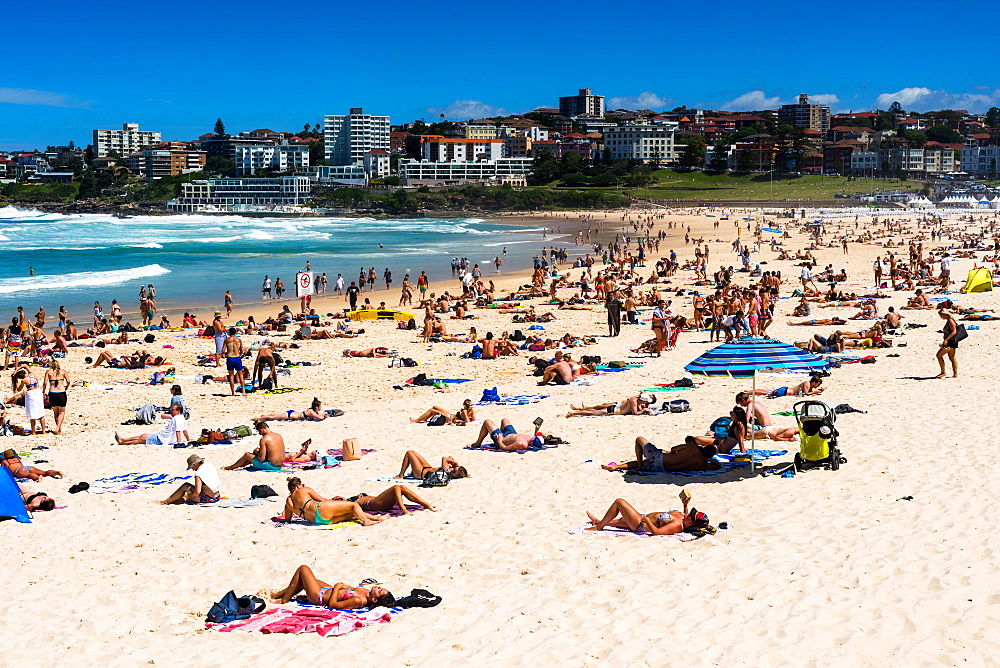A packed Bondi Beach on a summer's day. Sydney, Australia.