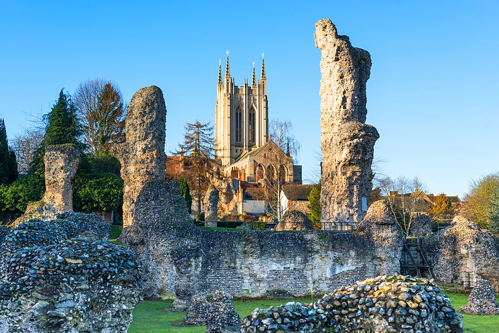 Ruins of the Abbey of Bury St. Edmunds, historic Benedictine monastery, with St. Edmundsbury Cathedral, Bury St. Edmunds, Suffolk, England, United Kingdom, Europe - 1267-232
