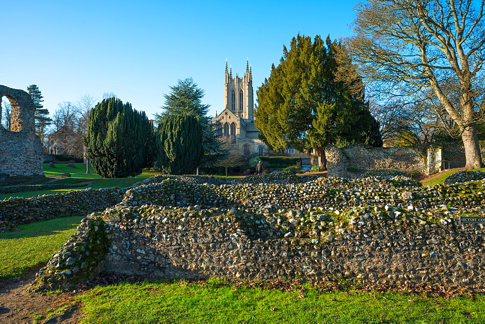 Ruins of the Abbey of Bury St. Edmunds, historic Benedictine monastery, with St. Edmundsbury Cathedral, Bury St. Edmunds, Suffolk, England, United Kingdom, Europe