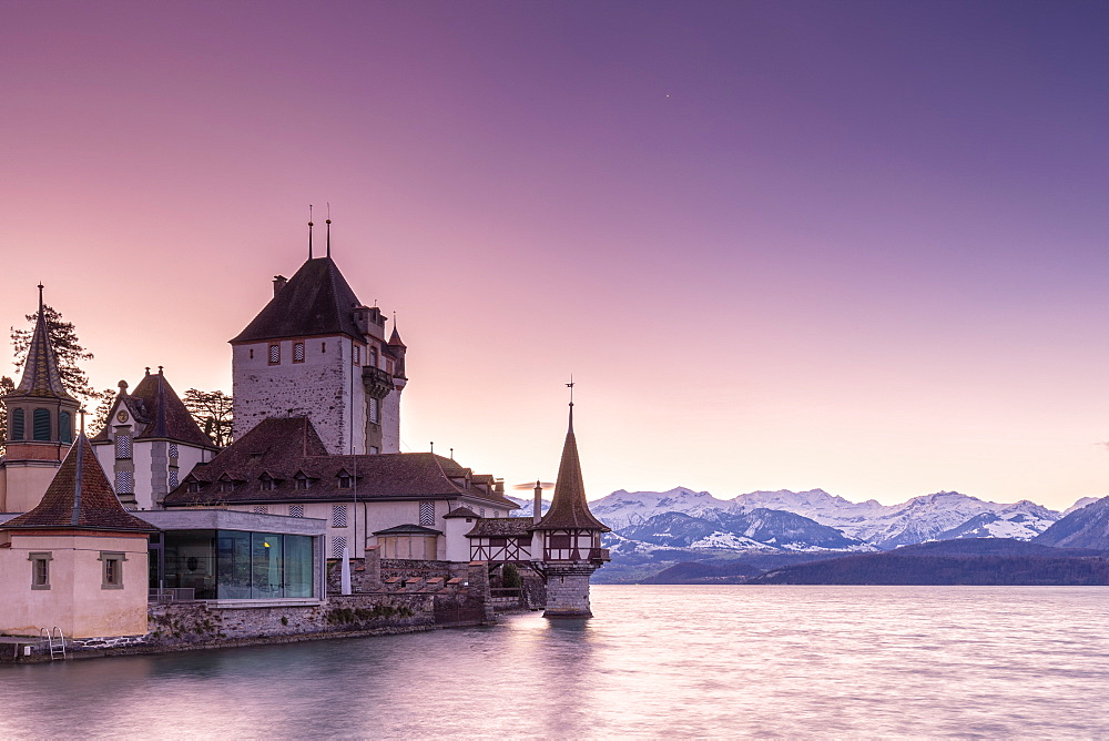 Sunrise at the castle of Oberhofen am Thunersee with the snow-covered Bernese Alps, Canton of Bern, Switzerland, Europe.