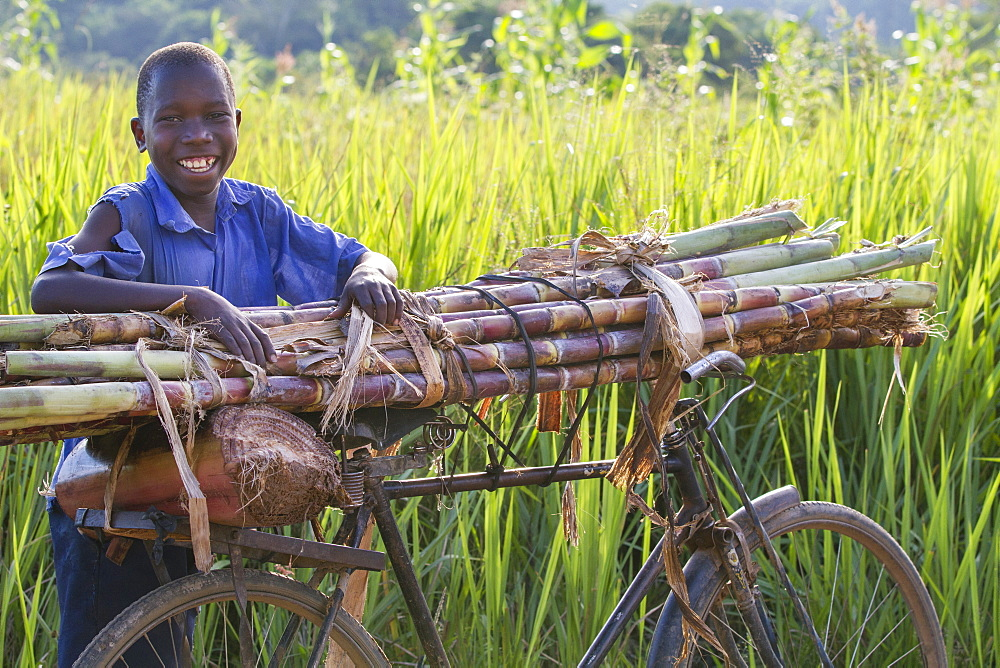 A boy smiling as he takes a rest from pushing a pile of sugar cane on his bike, Uganda, Africa - 1270-102