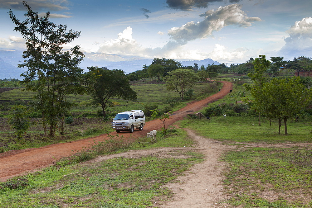 A mini bus drives along a red dusty earth road through rural Uganda.