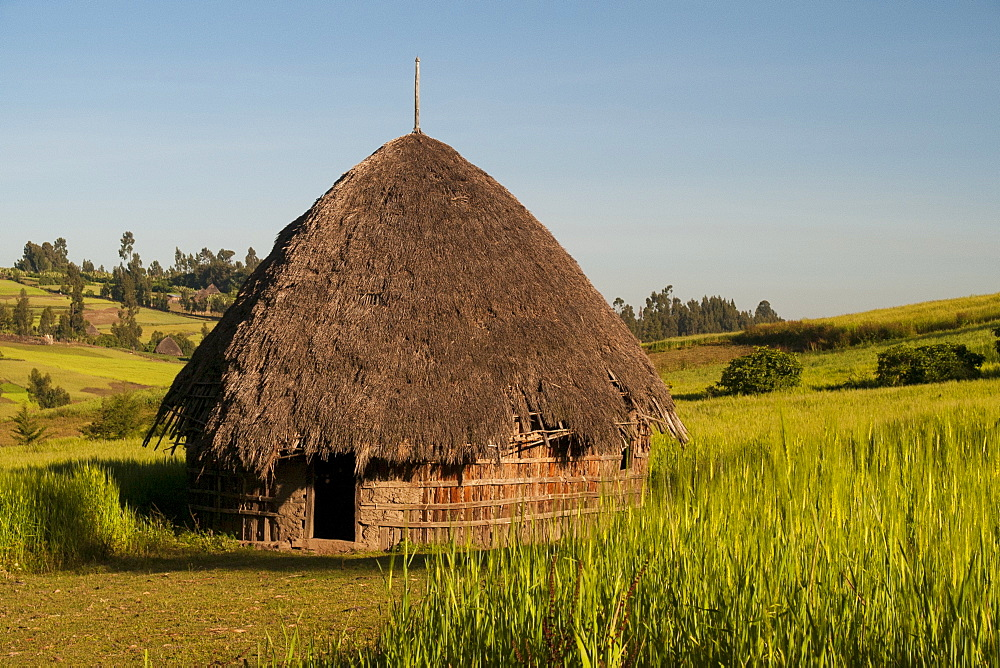 A traditional mud hut with a thatched roof in rural Ethiopia, Africa