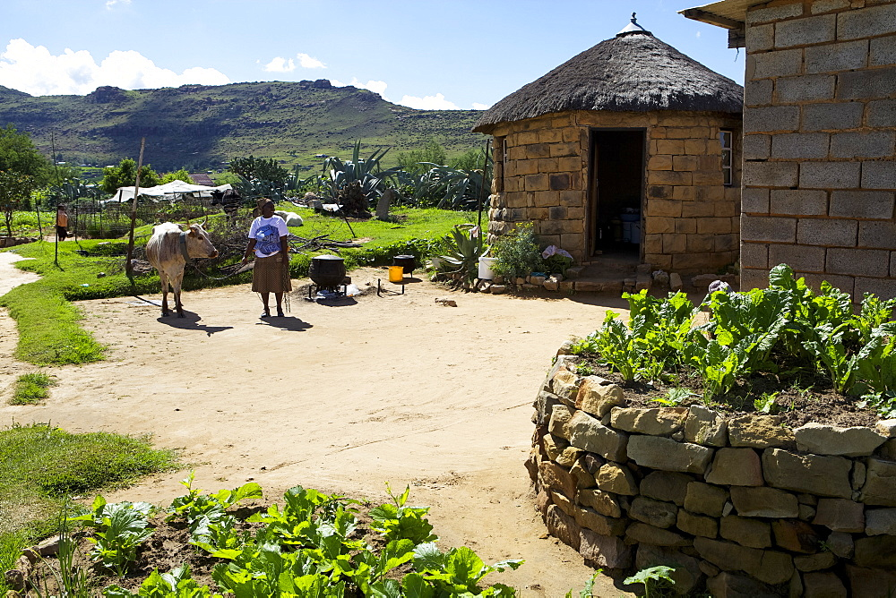 A female farmer standing outside a typical looking farm yard, Lesotho, Africa