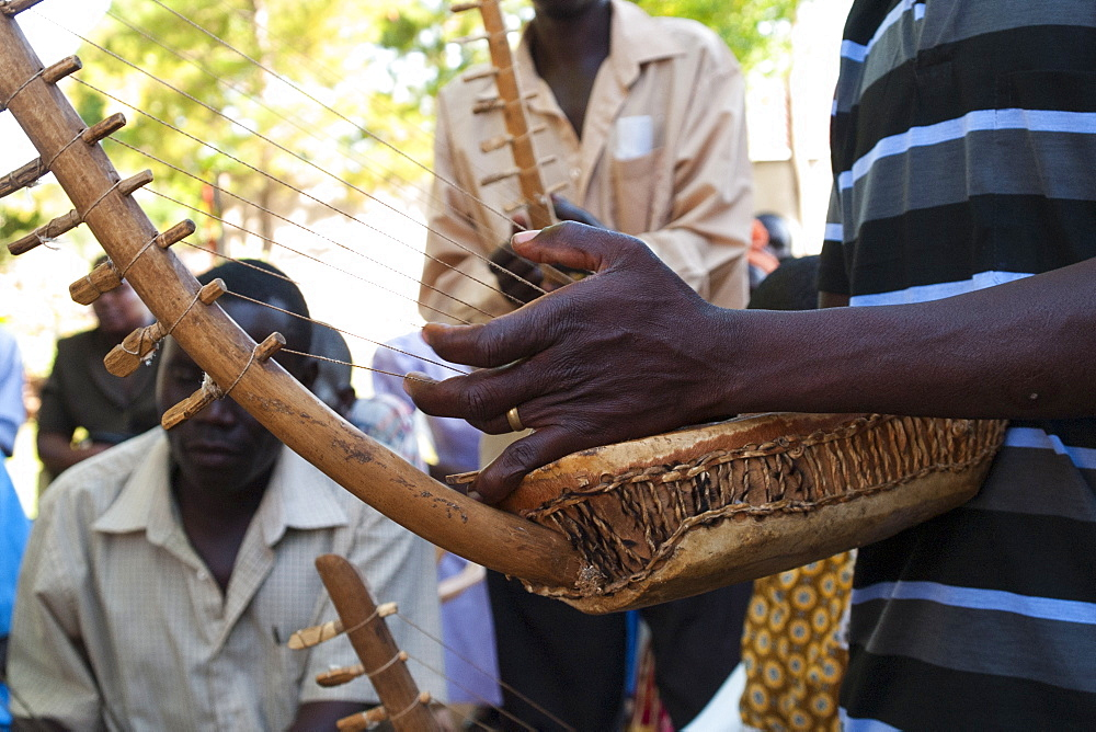 A group of men playing the chordophone which a musical instrument from the harp family, Uganda, Africa