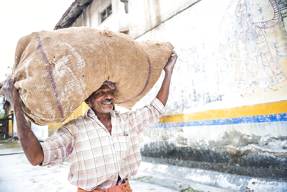 Man carrying sack of ginger at a market in Fort Kochi (Cochin), Kerala, India, Asia