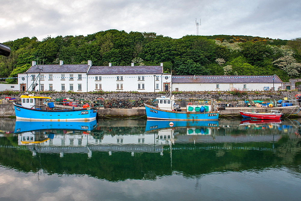 Rathlin Island, County Antrim, Ulster, Northern Ireland, United Kingdom, Europe