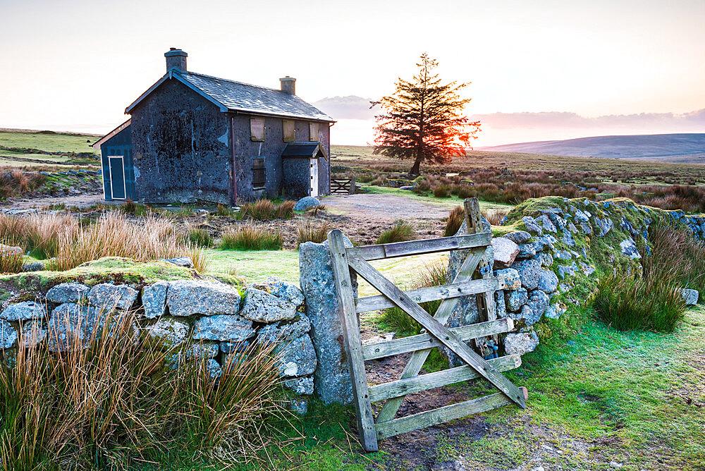 Nuns Cross Farm, Dartmoor National Park, Devon, England, United Kingdom - 1272-69